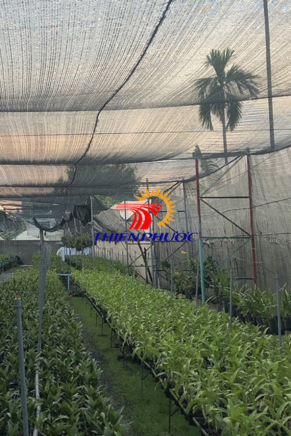 lưới che nắng cho cây trồng